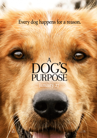 """A Dog's Purpose"" movie review"