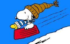 Top 10 Winter Activities