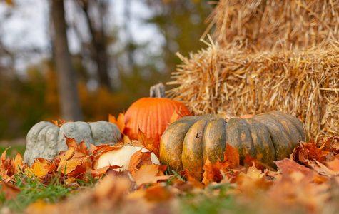 World's Favorite Season: Fall