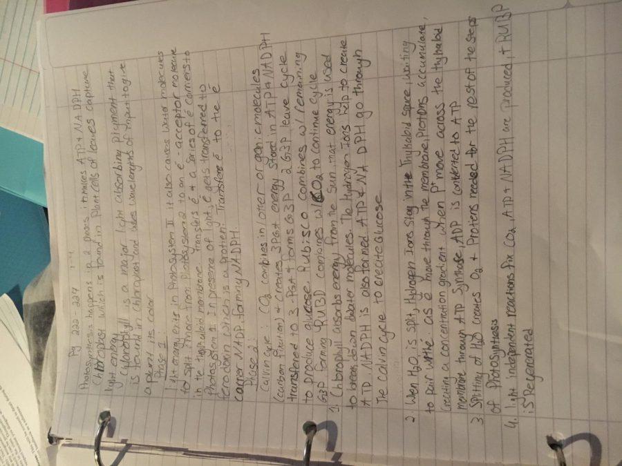I+Am+Awful+at+Biology
