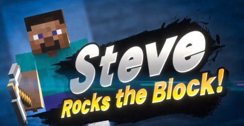 The New Super Smash Bros Fighter